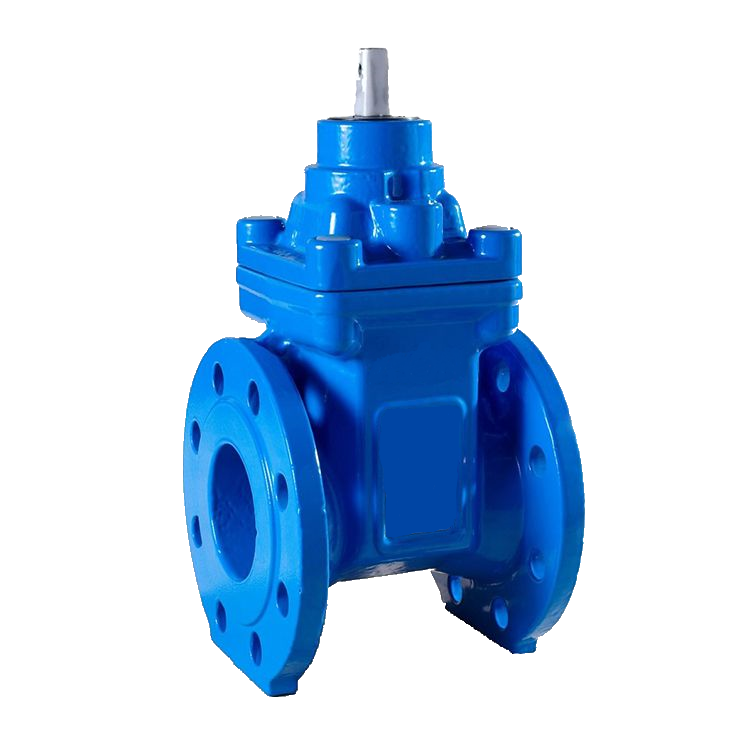 Resilient seat gate valve